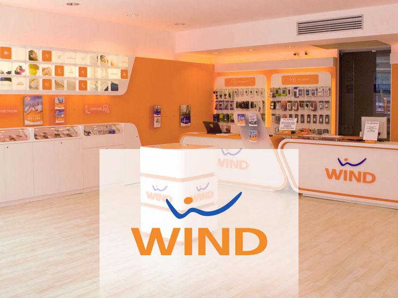 Immagine con logo del case history di Analytics Network: Wind